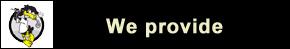 we provide